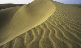 Wave dune
