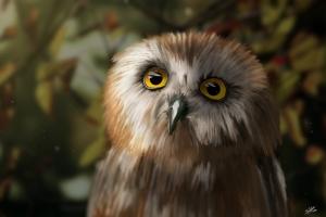 Owl Painting Photoshop